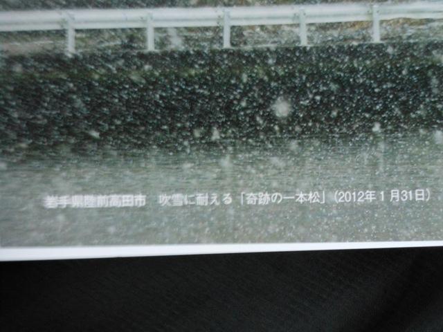 DSCN5894.JPG